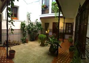 Casa Patio de la Vega