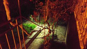 Casa Migliaca, Farmy  Pettineo - big - 41