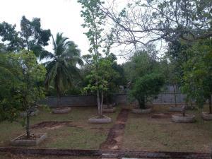 Orchid Palace, Отели  Анурадхапура - big - 44