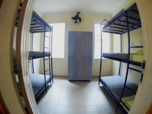 Bed in 12-Bed Dormitory Room