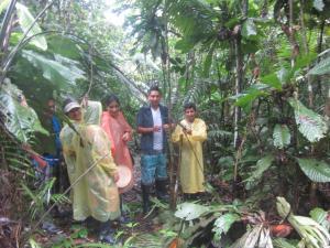 Amazon Golden Snake, Chaty  Santa Teresa - big - 17