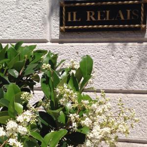 Il Relais (1 of 65)