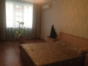 Apartment Konnoy armii 37a, Appartamenti  Rostov on Don - big - 4