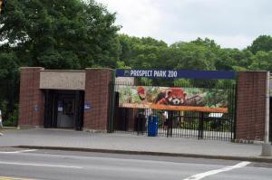 Prospect-Lefferts Garden Brooklyn Apartments, Апартаменты  Бруклин - big - 34