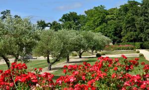 Domaine de La Corbe, Bed and Breakfasts  Bournezeau - big - 3