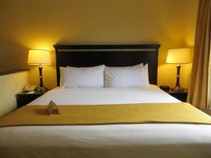 Quality Suites Orlando Close to I-Drive, Hotels  Orlando - big - 13