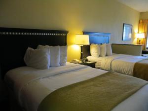 Quality Suites Orlando Close to I-Drive, Hotels  Orlando - big - 8