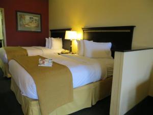 Quality Suites Orlando Close to I-Drive, Hotels  Orlando - big - 2