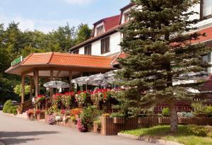 Waldhotel Rennsteighof, Hotel  Ruhla - big - 28