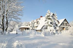 Waldhotel Rennsteighof, Hotel  Ruhla - big - 26