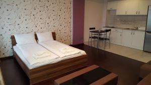 Grand'Or Studio Apartments, Apartmanok  Nagyvárad - big - 11