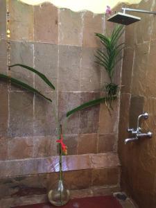 The Secret Garden Goa, Privatzimmer  Saligao - big - 70