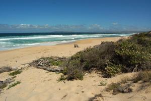 Willa przy plaży