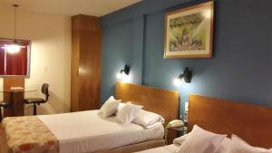 Hotel Amalfi, Отели  Асунсьон - big - 5