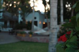 Casa Costa Azul, Отели  Сан-Хосе-дель-Кабо - big - 15