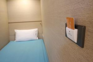 Capsule in 10-Bed Mixed Dormitory Room