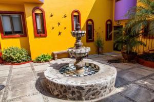 Ajijic Suites - on Hidalgo, Apartmány  Ajijic - big - 30