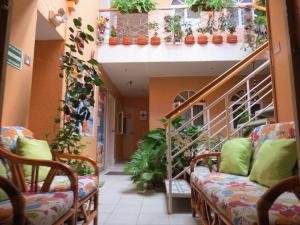 Hotel Dulce Hogar & Spa, Hotely  Managua - big - 59