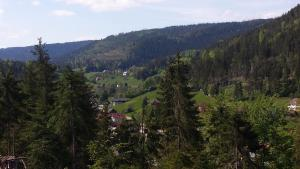 Haus am Wald, Apartmány  Baiersbronn - big - 26