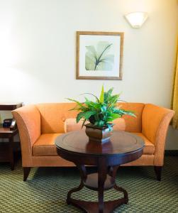 Vista Inn & Suites Tampa, Hotely  Tampa - big - 15