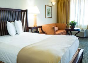 Vista Inn & Suites Tampa, Hotely  Tampa - big - 13