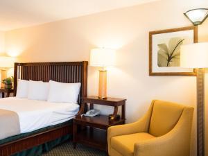 Vista Inn & Suites Tampa, Hotely  Tampa - big - 18