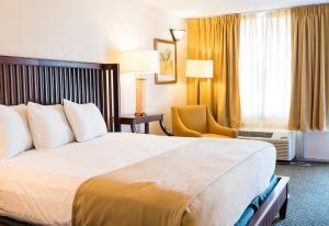 Vista Inn & Suites Tampa, Hotely  Tampa - big - 10