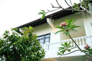 Hoi An Red Frangipani Villa, Отели  Хойан - big - 30
