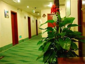 Greentree Inn Beijing Miyun Xinzhong Street Business Hotel, Hotels  Miyun - big - 13