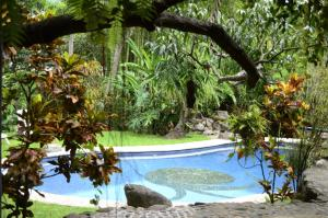 Aldea Ecoturismo, Hotels  Jalcomulco - big - 21