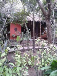 Aldea Ecoturismo, Hotels  Jalcomulco - big - 12