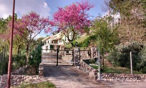Prenota Villa Poggio Ulivo