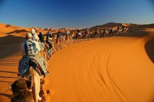 Camel Bivouac Merzouga, Campeggi di lusso  Merzouga - big - 33