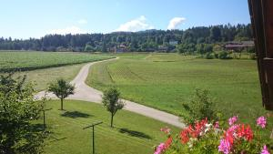 Gästehaus Lipnik, Appartamenti  Sankt Kanzian - big - 16