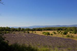 hautes plaines, Holiday homes  Saignon - big - 5