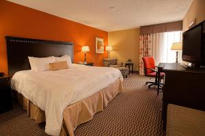 Hampton Inn Asheville – Biltmore Area, Hotely  Asheville - big - 5