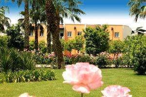 Adora Golf Resort Hotel, Rezorty  Belek - big - 9