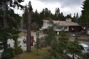 Persey Flora Apartments, Aparthotely  Borovets - big - 98