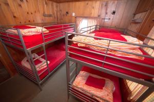 ITH Big Bear Mountain Adventure Lodge, Hostely  Big Bear Lake - big - 3