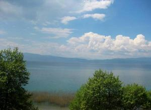 Ohrid House, Appartamenti  Lagadin - big - 4