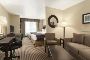 Studio Suite with Two Double Beds