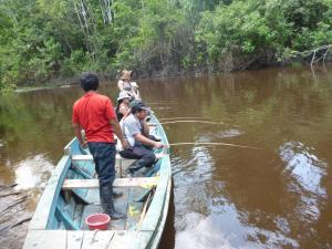 Amazon Golden Snake, Chaty  Santa Teresa - big - 19