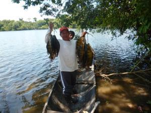 Amazon Golden Snake, Chaty  Santa Teresa - big - 20