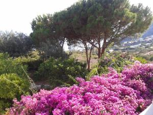 Casa Lidia - AbcAlberghi.com