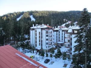 Borovets Holiday Apartments - Different Locations in Borovets, Apartments  Borovets - big - 173