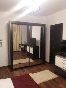 Sophia Studio, Apartments  Iaşi - big - 28