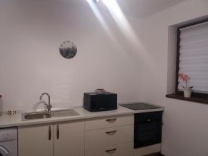 Sophia Studio, Apartments  Iaşi - big - 16