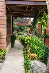 Laem Sila Resort, Курортные отели  Ламаи-Бич - big - 147
