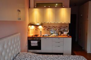 Studio Silva, Apartmanok  Tirana - big - 36