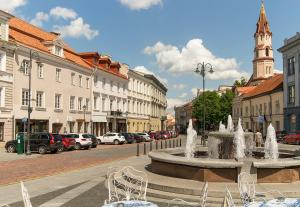 Pretty Vilnius Apartments, Apartmány  Vilnius - big - 15